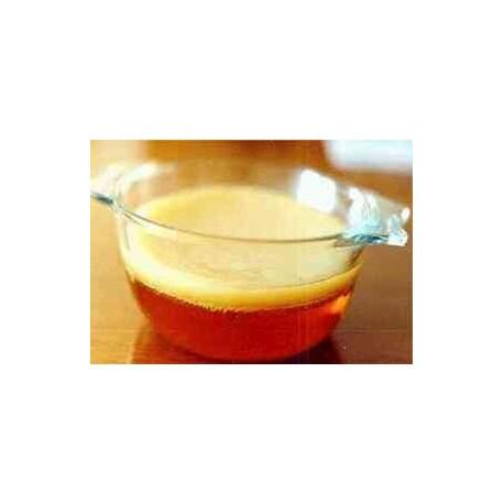 KOMBUCHA - čajová huba