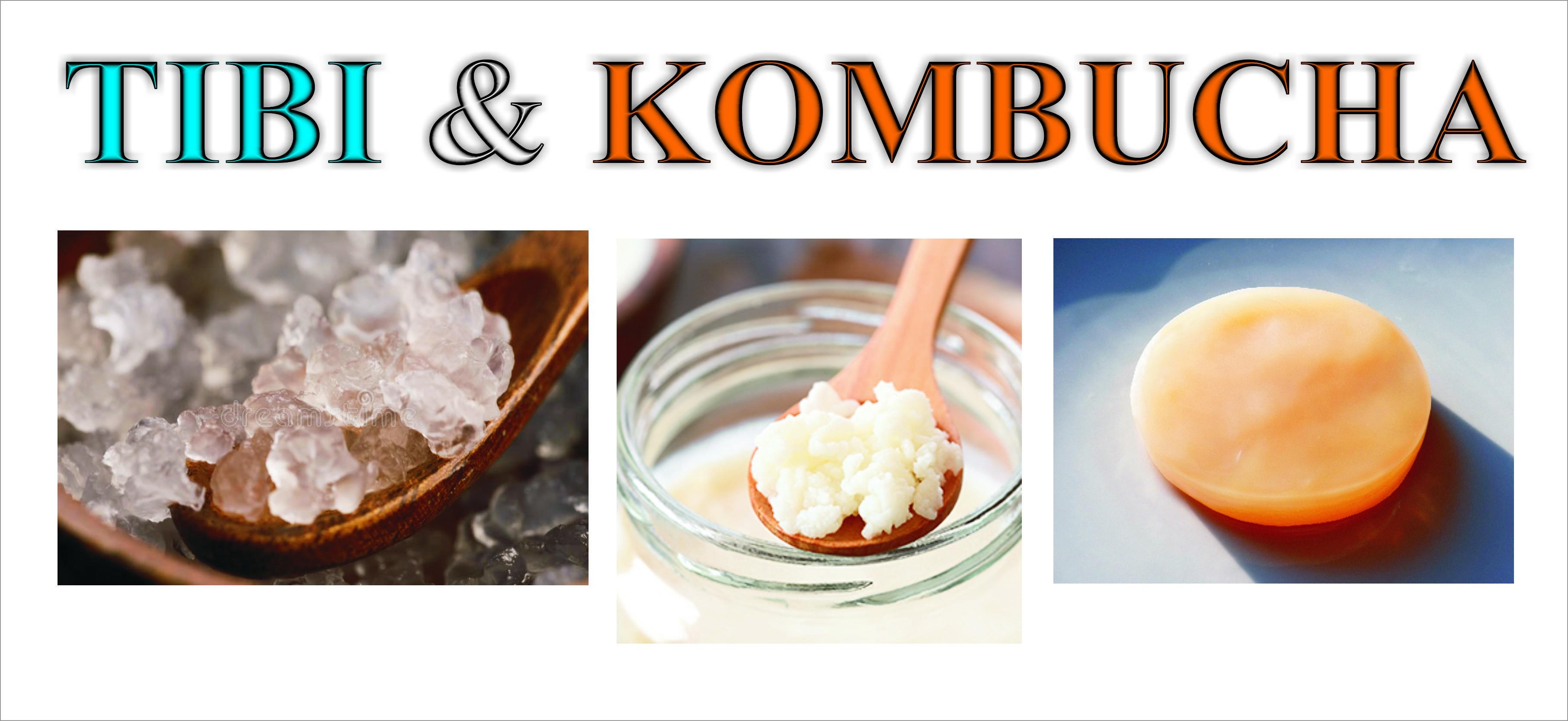 TIBI & Kombucha
